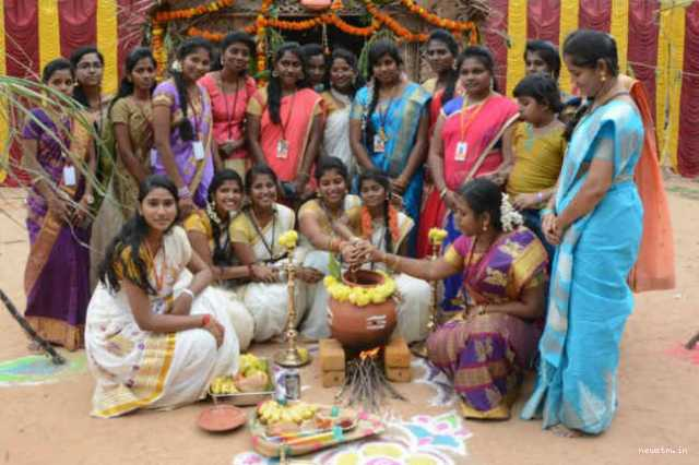 meaning-and-significance-of-pongal-festival