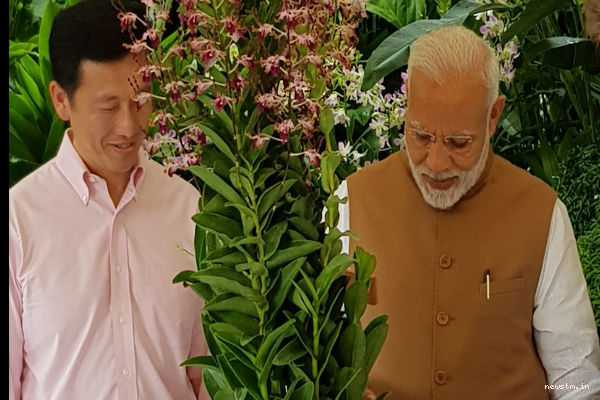 orchid-named-after-pm-narendra-modi-at-national-orchid-garden-in-singapore