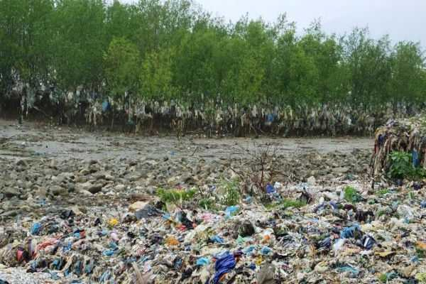 thanh-hoa-vietnam-beach-with-tide-of-blue-waste