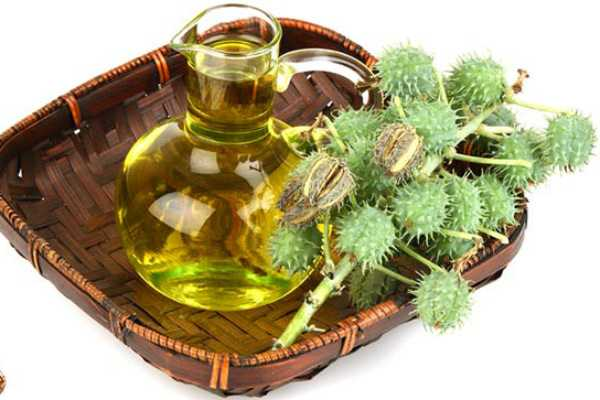 benefits-and-uses-of-castor-oil