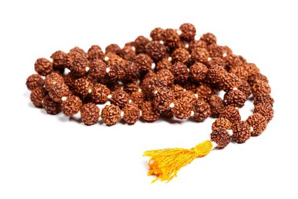 who-can-wear-what-type-of-rudraksha