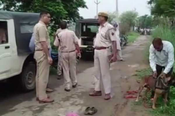 one-killed-in-cow-vigilantes-attack-in-rajasthan