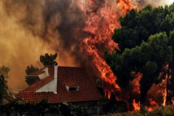 greece-wildfires-at-least-50-killed-dozens-injured