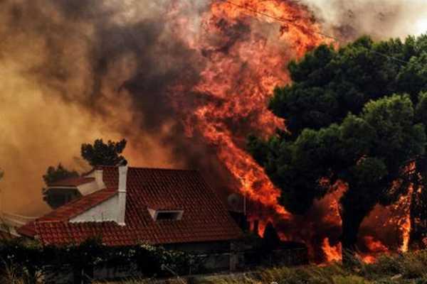 74-killed-in-greece-wild-fire