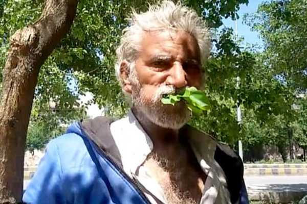 man-eats-leaves-fresh-wood-for-25-years-has-never-fallen-ill