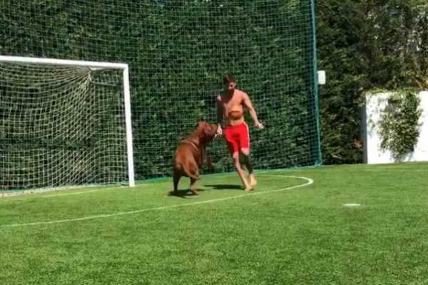 messi-plays-football-with-his-dog-hulk