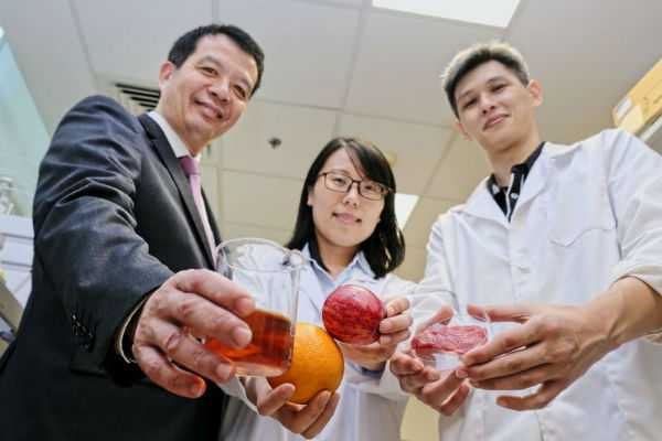 nanyang-technological-university-team-invents-new-natural-food-preservative