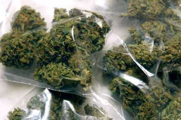 malaysia-may-become-the-first-country-in-asia-to-legalise-weed-for-medical-purposes
