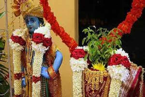 tulsi-marriage-which-all-our-ancestors-wish-to-see