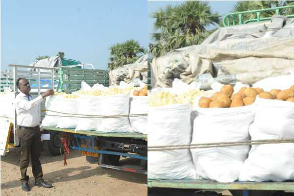 inspection-of-food-safety-officers-in-salem-jaggery-market