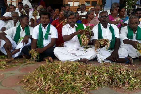 to-compensate-for-the-disease-affected-small-onion-farmers-demand