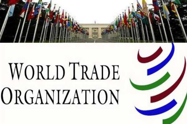 world-trade-organisation-steps-special-story