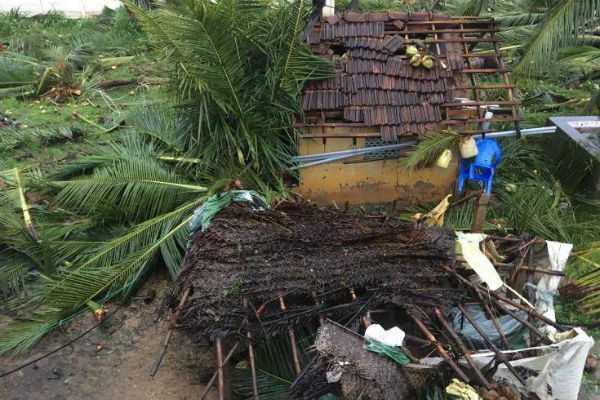 gaja-storm-relief-fund-madurai-high-court-order