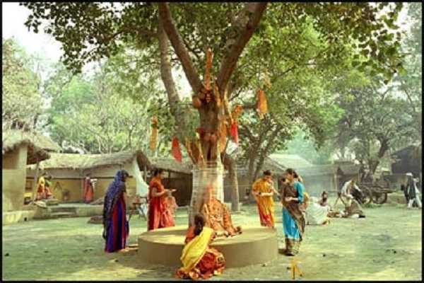 this-is-the-right-time-to-go-round-the-peepal-tree