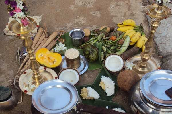 pongal-special-one-day-for-the-well-being-of-the-sibblings