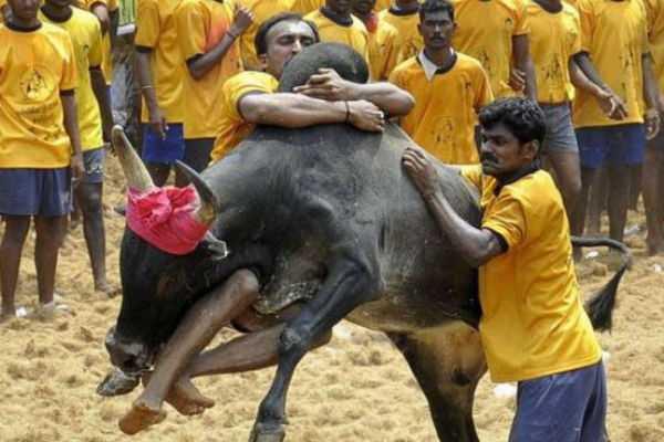 avaniyapuram-jallikattu-meeting