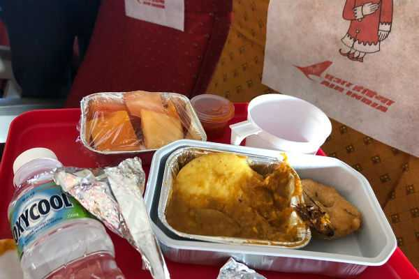 cockroach-found-in-food-served-to-air-india-passenger