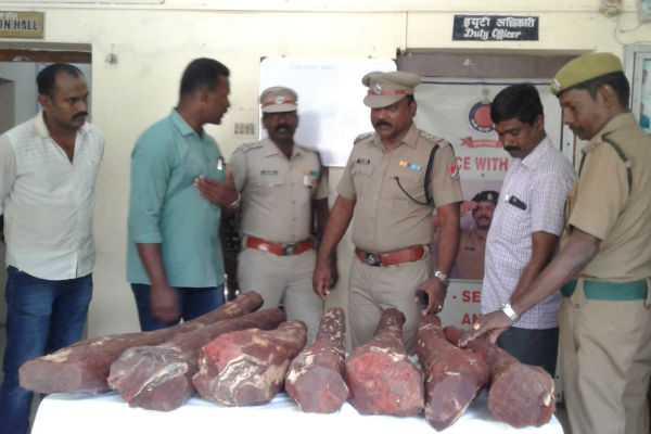 600-kg-of-sandalwood-seized-at-central-railway-station