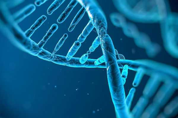 genes-may-impact-the-quality-of-your-marriage-says-study