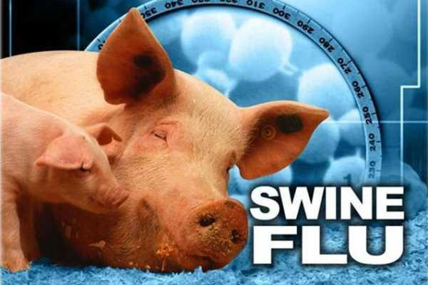 six-more-die-of-swine-flu-in-rajasthan-toll-mounts-to-125