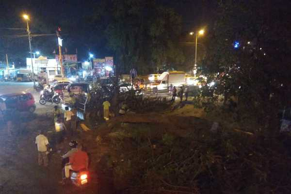 coimbatore-15-years-old-tree-tilted-in-bypass