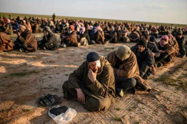 is-terrorists-surrendered-to-syria-army
