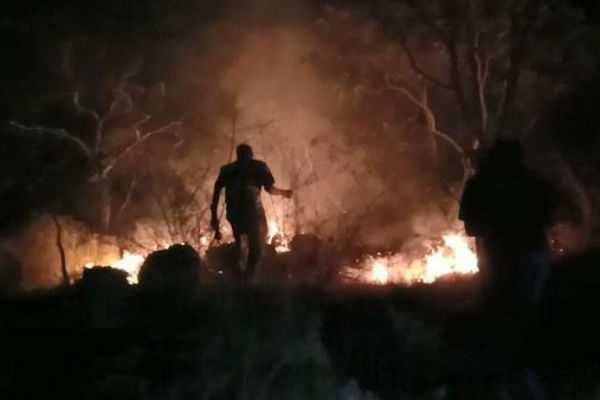fire-at-kovai-maruthamalai-forest-area