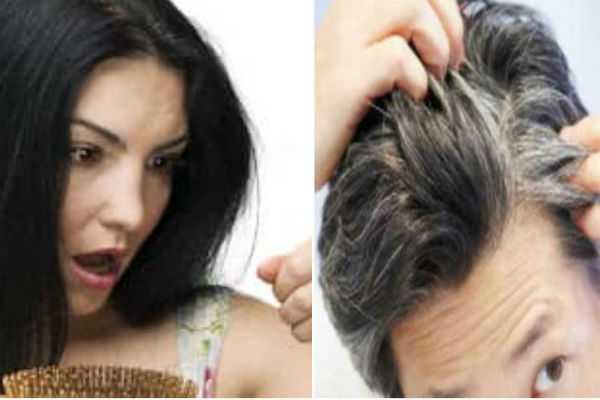 ayurvedic-remedies-to-reverse-hair-loss