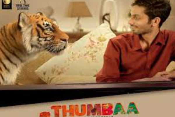 thumbaa-shoot-wrapped-up