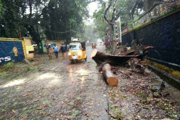 over-25-dead-in-rain-storm-in-gujarat-madhya-pradesh-rajasthan