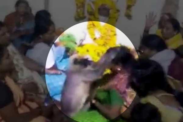 monkey-consoles-woman-at-karnataka-funeral-video-goes-viral