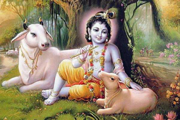 if-you-have-love-to-krishna