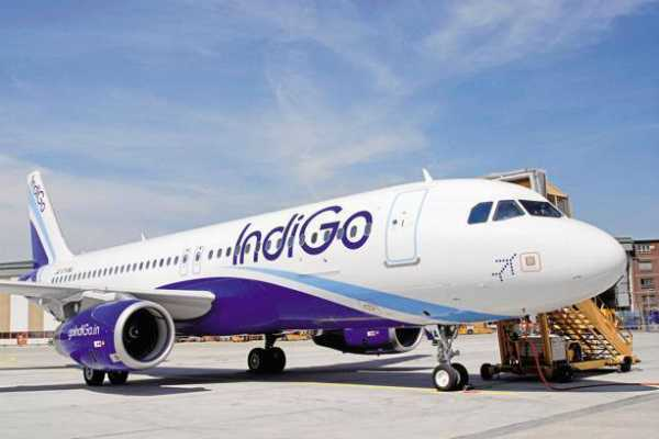 indigo-announces-new-international-flights