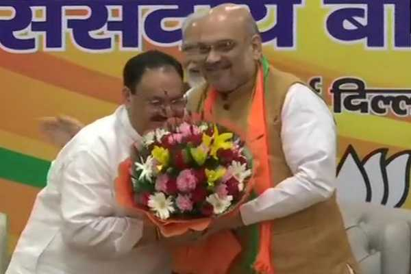 j-p-nadda-elected-as-the-bjp-national-working-president