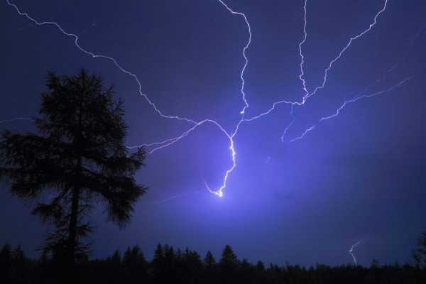 rain-standing-under-the-tree-struck-by-lightning-kills-woman