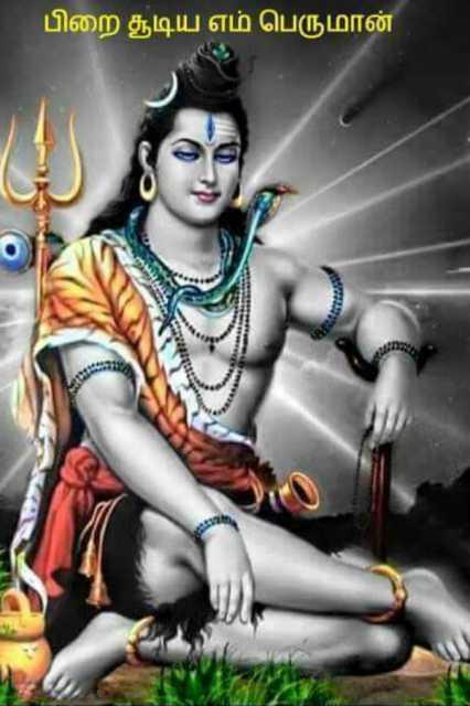 tirunaavukkarasar-naayanaar-6