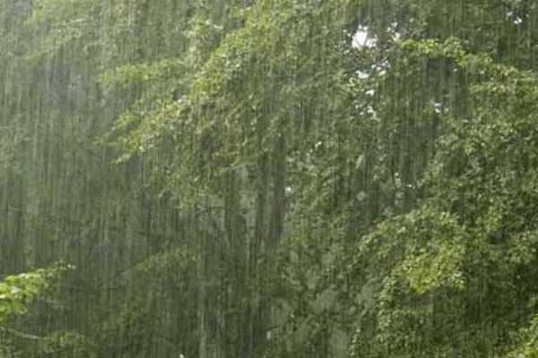 heavy-rainfall-in-three-districts-coimbatore-nilgiris-and-theni