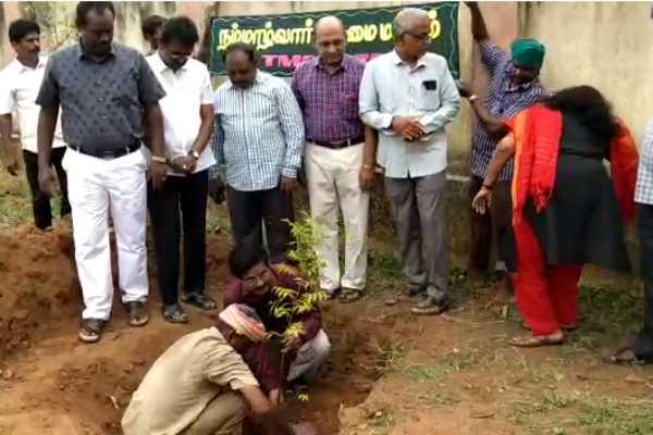 kumbakonam-tree-planting-in-municipal-areas