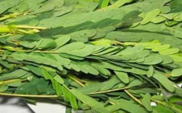 specialities-of-agathi-keerai