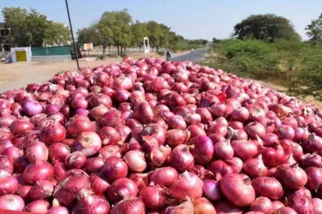 onion-prices-likely-to-drop-in-next-3-days-govt