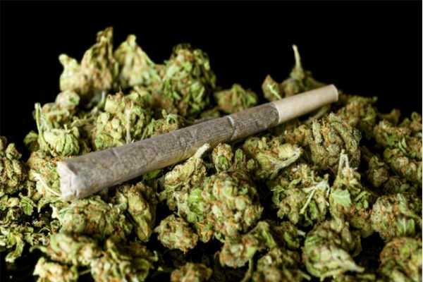 frequent-police-raids-in-chennai-doubling-of-ganja-rates