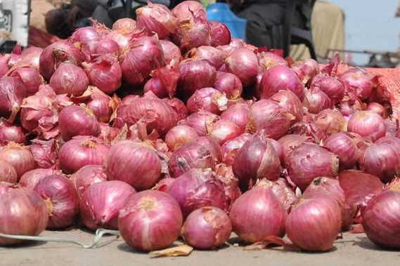 onion-will-be-sold-at-rs-33-announcement-by-minister-selur-raju