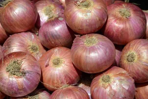 ban-on-export-of-onions-central-government-action