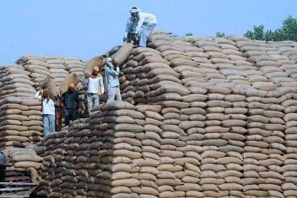 granaries-overflowing-send-wheat-rice-as-aid-to-deserving-countries-food-department-to-mea