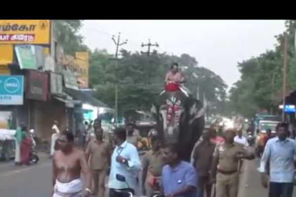 trichy-thula-month-celebration-at-srirangam-renganathar-temple