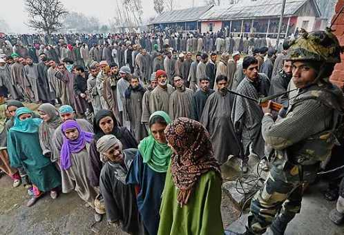 99-5-per-cent-polling-registered-in-first-ever-bdc-elections-in-j-k