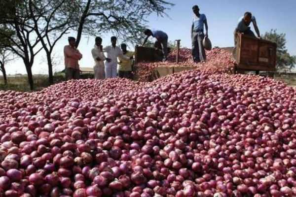 onion-rate-decreased