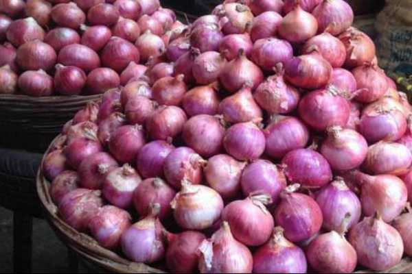 egypt-onions-arrived-in-trichy