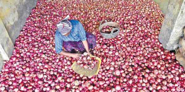 people-rejects-egypt-onion