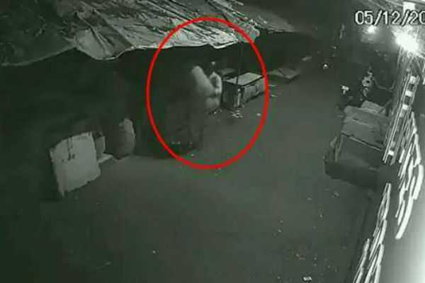 onion-thieves-caught-by-cctv